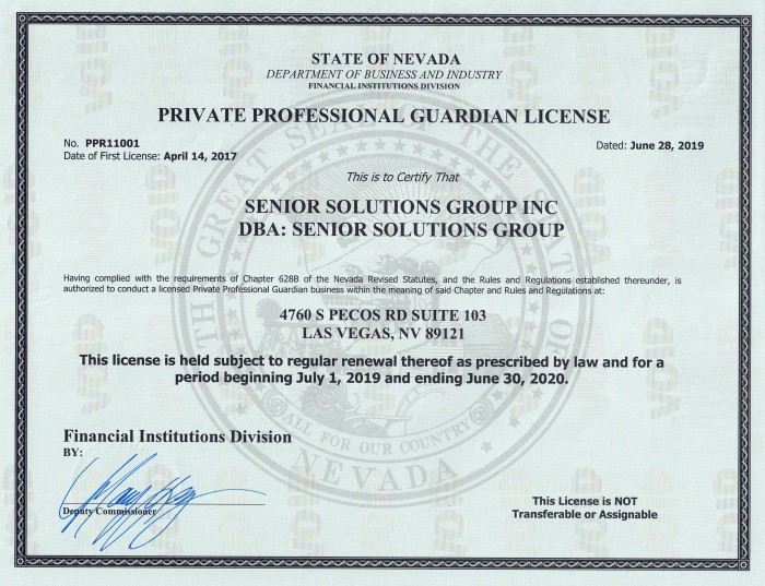 State of Nevada License 2019